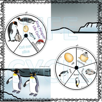 Penguins Bundle