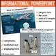 Penguins Unit: PowerPoint and Printables, Non-Fiction
