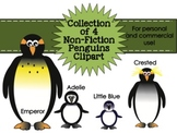 Penguins Non-Fiction Collection Clipart for Personal & Commercial Use