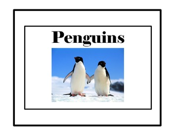 Penguins: Non Fiction Text with Penguin Fact Cards and Activities