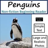 Penguins: Non-fiction animal e-book for beginning readers