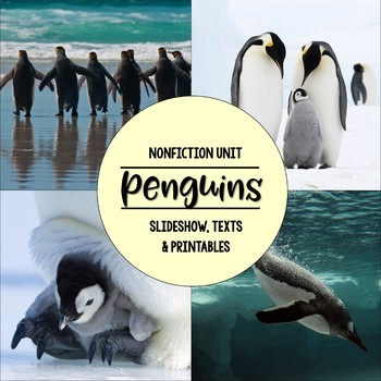 Penguins Nonfiction Close Reading & Visual Vocabulary Unit