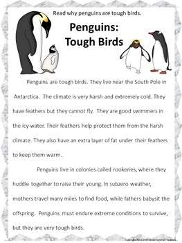 Penguins Nonfiction Reading Passage: Fluency and Writing