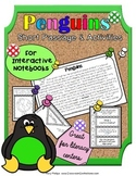 Penguins: Reading Passage and Questions: Interactive Notebook