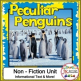 Penguins! Non-fiction Unit 1st and 2nd Grade