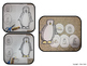 Penguin Craft: {Life Cycle of a Penguin Craftivity}