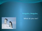 Penguins, Penguins