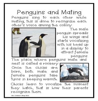 Penguins Reader and Lap Book