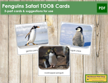 Penguin Safari Toob Cards - Montessori