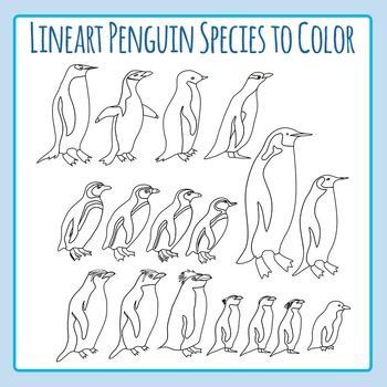 Penguins Species Black and White Line Art 2 / Clip Art Set for Commercial Use