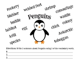 Penguins Vocab