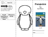 Penguins by Kate Waters ~ Trifold