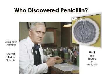 Penicillin Discovery Science or History Project