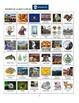 Pennsylvania:  Sites and Symbols Bingo