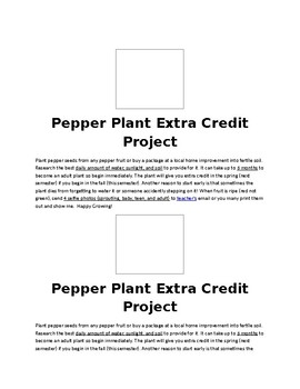 Pepper Plant Project