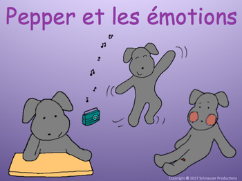 Pepper and Emotions in French