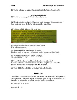 Peppered Moth Online Lab Sheet