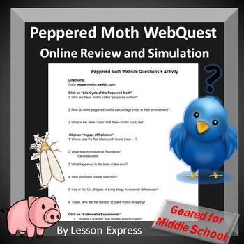 Peppered Moths Natural Selection Webquest Activity by ...