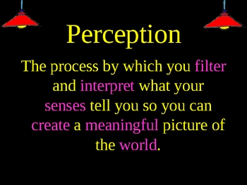 Perception: An Introductory PowerPoint