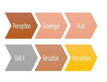 Perception Scavenger Hunt Unit 4 Sensation and Perception