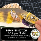 Perch Paper Dissection - Scienstructable 3D Dissection Mod