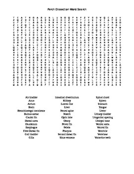 Perch Dissection Word Search