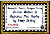 Percy Shelley Sample Essay Stanzas Written in Dejection Ne