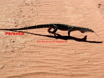 Perentie - Power Point Information Facts Pictures