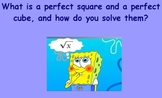 Perfect Squares and Perfect Cubes Flipchart 8th Grade Common Core Math Unit 2