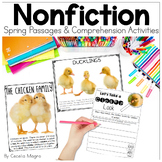 Perfectly Primary Nonfiction Articles and Close Reading SPRING EDITION