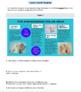 G4 Informative Reading & Writing - 'Save the Polar Bear' Performance Task
