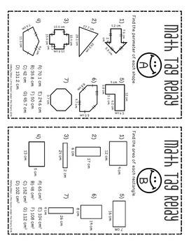 Perimeter Area Circumference Math Tag Relay