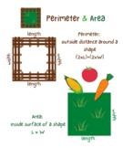 Perimeter & Area Garden Poster