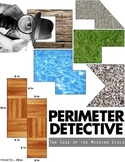 Perimeter Detective: The Case of the Missing Sides!