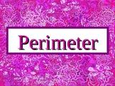 Perimeter PowerPoint Presentation