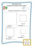 Perimeter of a square 5