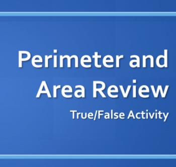 Perimeter/Area True-False Activity with Measurement Conversion