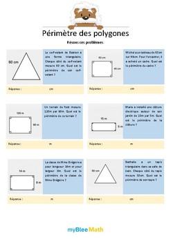 Périmètre des polygones 3 - Résous ces problèmes -CM2