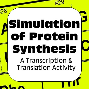 Genetics DNA Transcription & Translation: Protein Synthesis Dry Lab High School