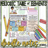 Periodic Table of Elements Squiggle Sheets & Quiz (NGSS)