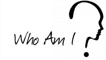 Personality Profile Beginning Language Class