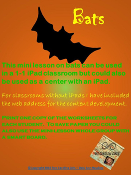 Personalized Learning Mini Lesson BATS