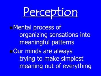 Perspective- Mind Tricks