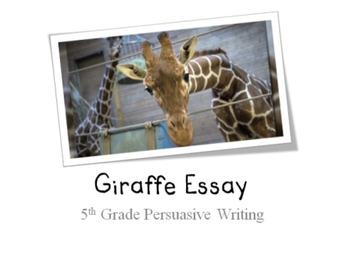 Persuasive Writing: Giraffe Essay