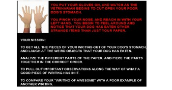 Opinion Writing - Parts of a Paper Dog Autopsy Activity (WORD VERSION)