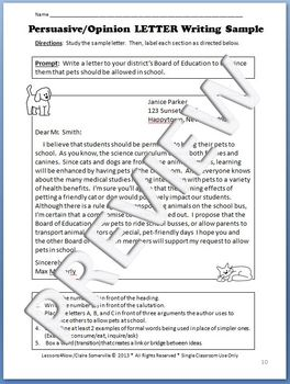 Persuasive/Opinion Paragraph Packet