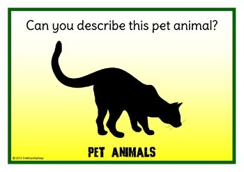 Pet Animals