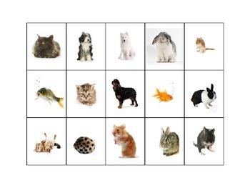 Pet Matching Cards