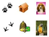 Pet Matching Flash Cards (for PreK Circle Time)