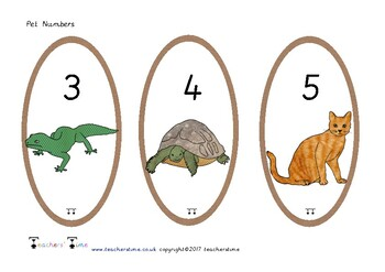 Pet Numbers 0-20
